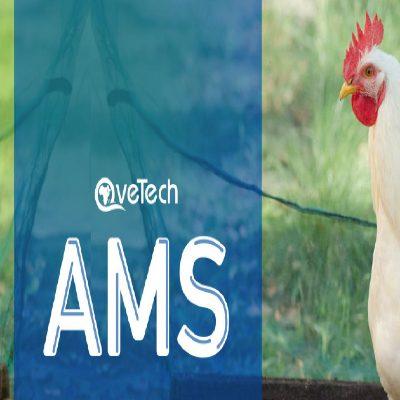 AMS-PHOTO-1 f